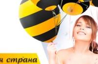 Как подключить роуминг на Билайне по России и за границей. Тарифы роуминга Билайн на звонки, смс и интернет