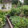 Дизайн огорода своими руками: 100 фото