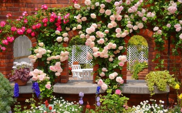 Клумбы во дворе частного дома: фото оригинальных идей