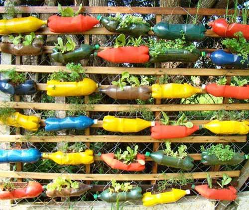 15 идей для дачи: вертикальный сад из пластиковых бутылок