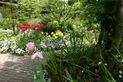 Садовые дорожки из кирпича: 55 фото